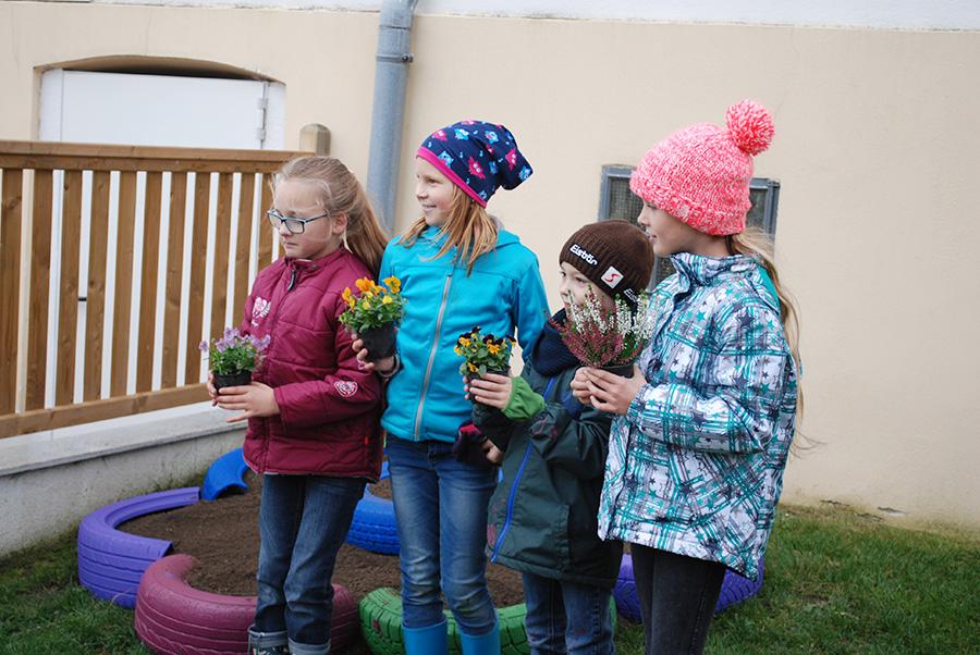 Blumenbeete gestalten mit Volksschulkindern
