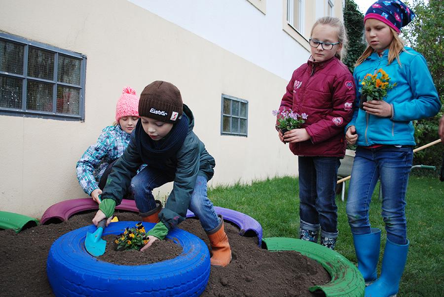 Recycling-Blumenbeete aus alten Reifen gestalten mit Volksschulkindern
