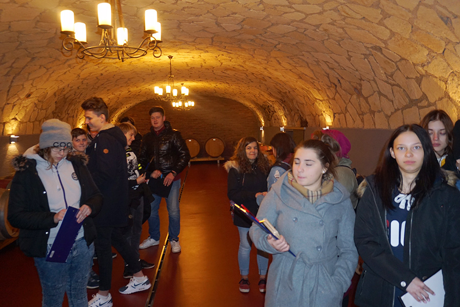 Exkursion Auf den Spuren des Heiligen Martin im Weingut Haider in Neusiedl am See - Foto 2