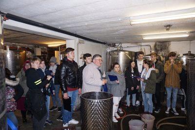 Exkursion Auf den Spuren des Heiligen Martin im Weingut Haider in Neusiedl am See - Foto 1