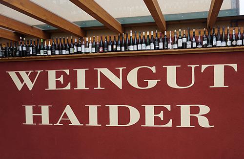 Beitragsbild Exkursion Weingut Haider zu Martini 2017