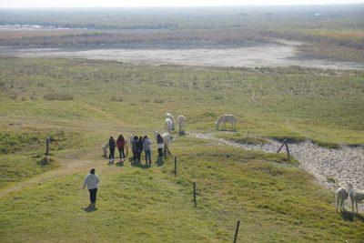 Landschaft im Nationalpark